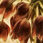 Spring Love Xix Art Print