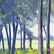 Spring Marsh From Deerfield Road Art Print