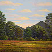 Spring Meadow At Sutter Buttes Art Print