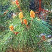 Spring Pine Art Print