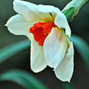Spring Prayer Art Print