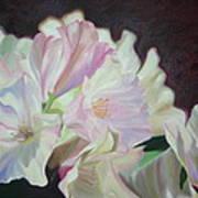 Spring Rhodys Art Print