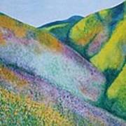 Valley Of Flowers Art Print