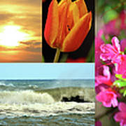 Spring Summer Collage Art Print