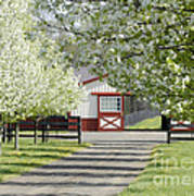 Spring Time At The Farm Art Print