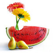 Spring Watermelon Art Print by Carlos Caetano