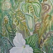 Spring's Awakening 2 Art Print
