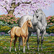 Spring's Gift - Mare And Foal Print by Crista Forest