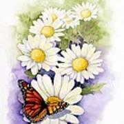 Springtime Daisies  Art Print