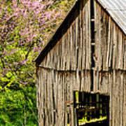 Springtime In Kentucky Art Print