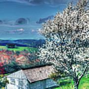 Springtime In The Blue Ridge Mountains II Art Print by Dan Carmichael
