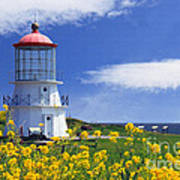 Springtime Lighthouse Art Print