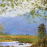 Springtime Moraine Park Art Print