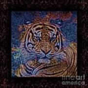 Sq Tiger Sat 6k X 6k Cranberry Wd2 Art Print