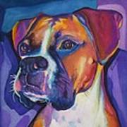 Square Boxer Portrait Art Print by Robyn Saunders