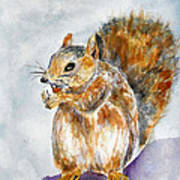 Squirrel With Nut Art Print