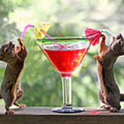 Squirrels At Cocktail Hour Art Print
