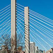 Sr-509 Cable Stayed Bridge Art Print