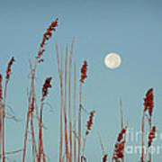 St. Augustine Beach Moonrise Art Print