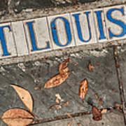 St Louis Street Tiles In New Orleans Art Print