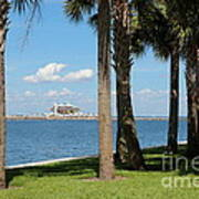St Pete Pier Through Palm Trees Art Print