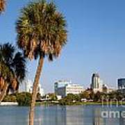St Petersburg Florida From Mirror Lake Park Art Print