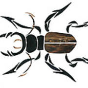 Stag Beetle Going Tribal Art Print