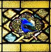 Stained Glass Template Blue Bird Of Happiness Art Print