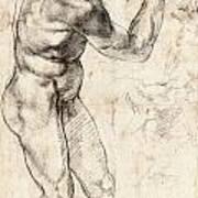 Standing Male Nude Art Print