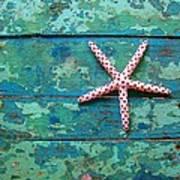 Seashore Peeling Paint - Starfish And Turquoise Art Print
