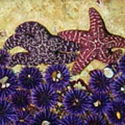 Starfish Dance Art Print