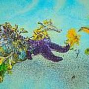 Starfish Paradise Art Print