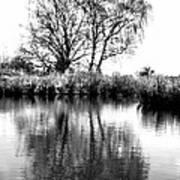 Stark Reflections Art Print