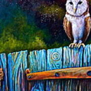 Starry Barn Owl Art Print