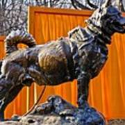 Statue Of Balto In Nyc Central Park Art Print