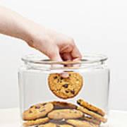 Stealing Cookies From The Cookie Jar Art Print