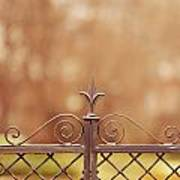 Steel Ornamented Fence Art Print