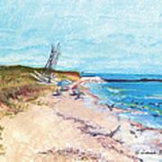 Steep Beach Art Print