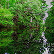 Steinhatchee River Art Print