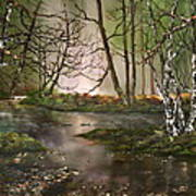 Stepping Stones On Cannock Chase Art Print