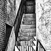 Steps Art Print