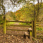Stile In Plessey Woods Art Print