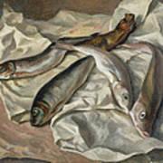 Still Life Of Fish, 1928 Art Print