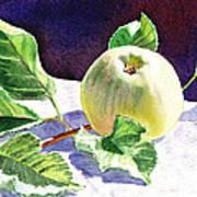 Still Life With Apple Art Print