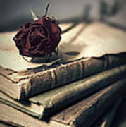 Still Life With Books And Dry Red Rose Art Print