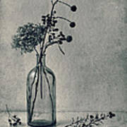 Still Life With Dry Flowers Art Print