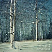 Still Winter Print by Priska Wettstein