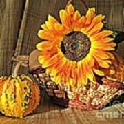 Stillife With  The Sunflower And Pumpkins Art Print by Halyna  Yarova