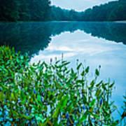 Stillness On Schreeder Pond Art Print