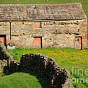 Stone Barn With Red Doors In Swaledale Yorkshire Dales Art Print